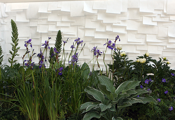 OUTDOOR WALLPAPER (Chelsea Flower Show) - Tracy Kendall Wallpaper