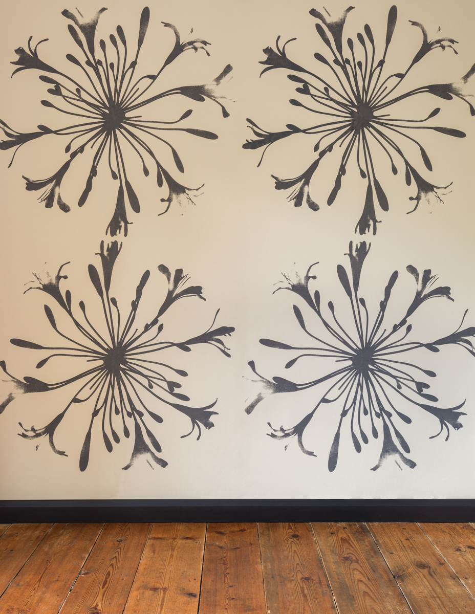 AGAPANTHUS - Tracy Kendall Wallpaper (photo - Ollie Harrop)